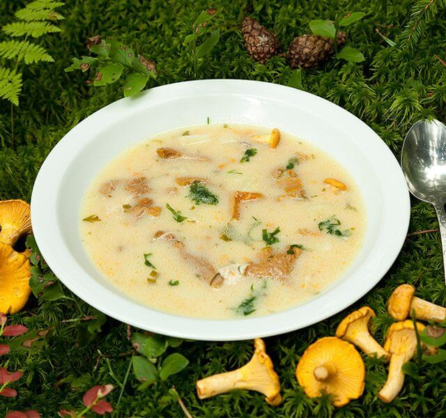 Waldpilz-Suppe