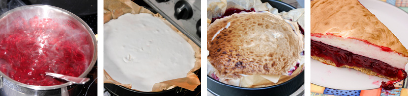 Jostabeerenkuchen 2.0 steppbilder2