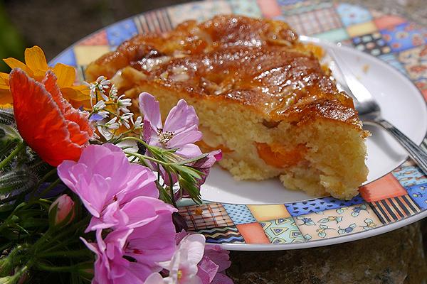 Aprikosenkuchen mit Walnüssen