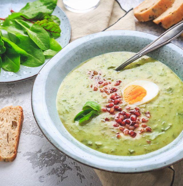 Sauerampfer-Suppe